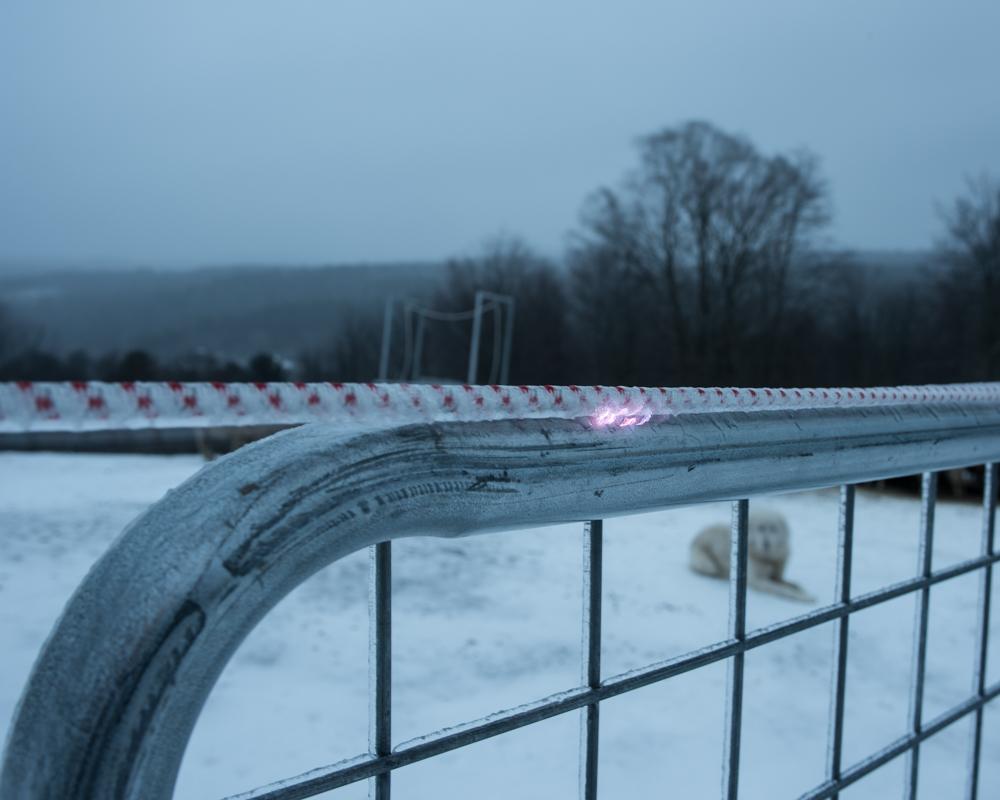 Fence spark-0493