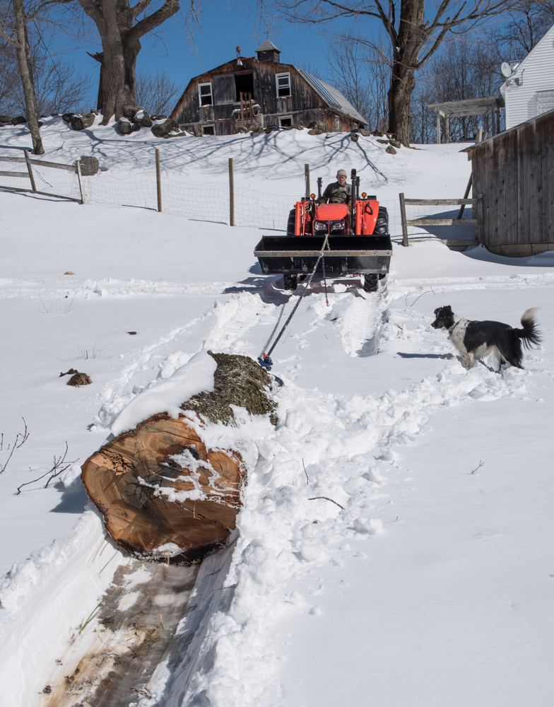 skidding log-7312