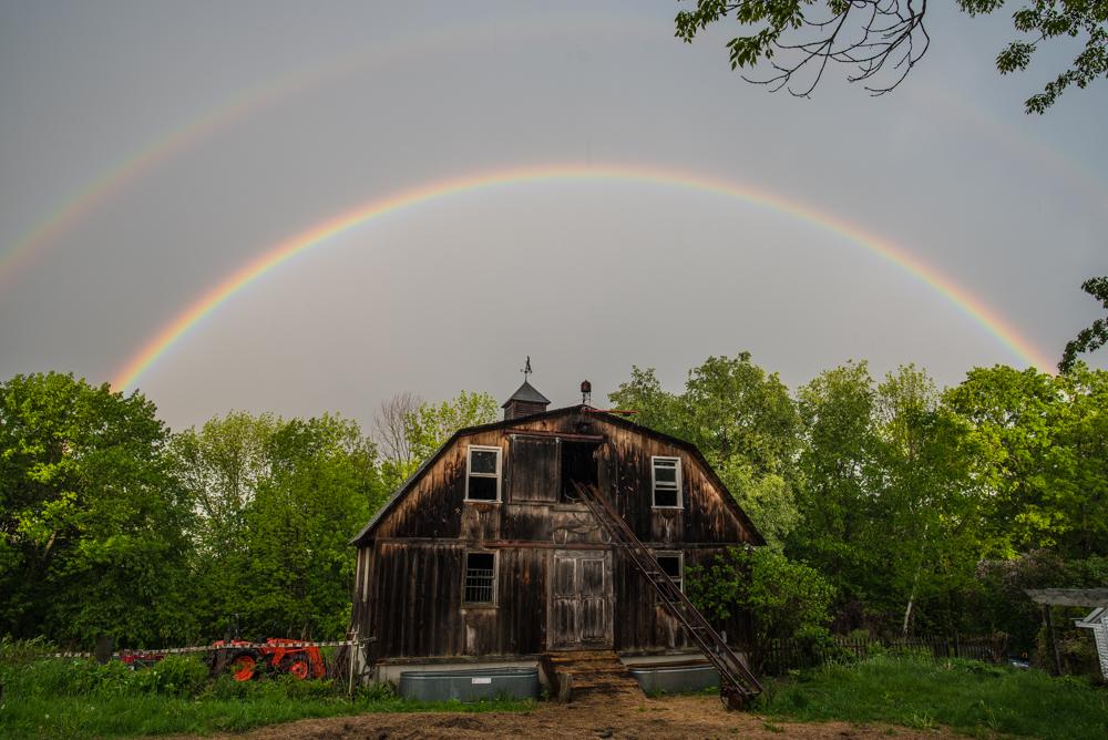 rainbow and LGDs-9492