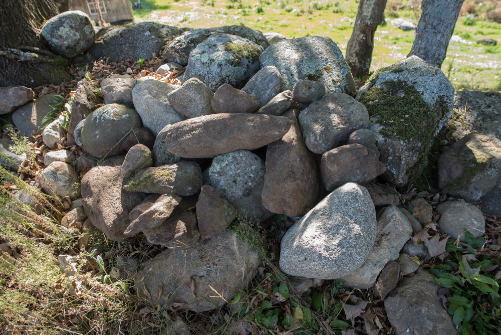moving rocks-2222